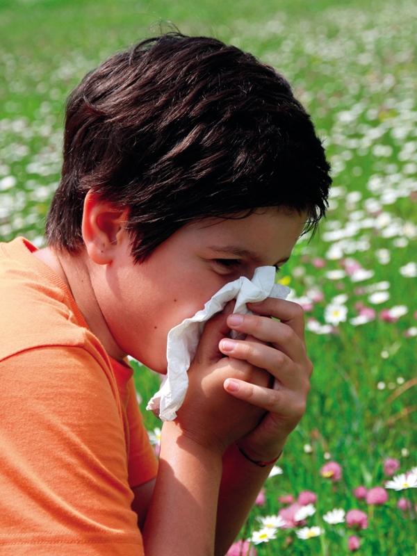 Rhinitis - Allergic (Pediatric)