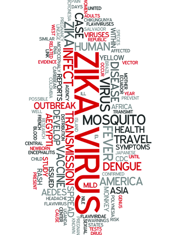zika%20virus%20infection